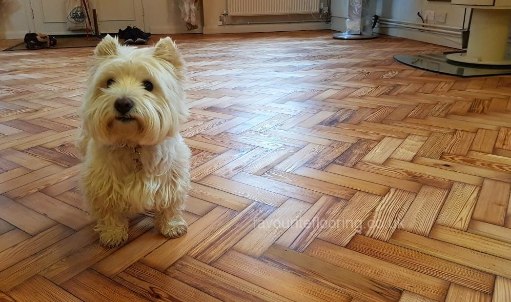 Old pine parquet flooring